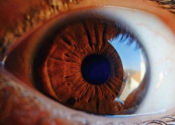 Hombre ciego recupera parcialmente la visión con una innovadora terapia de algas