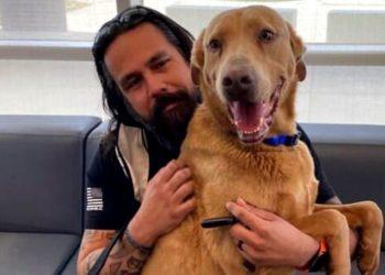 Hombre se reencuentra con su perro luego de que se perdiera hace más de cuatro años