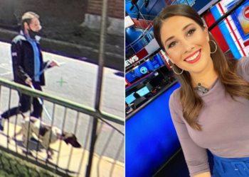 Periodista que informaba sobre el robo de un perro detiene al ladrón en vivo
