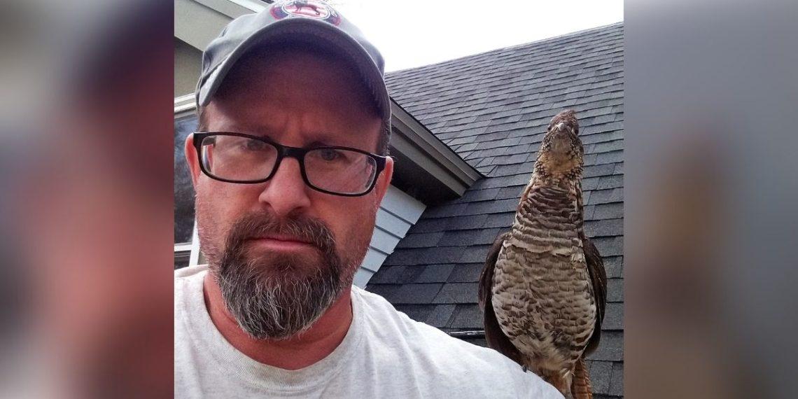 ave silvestre tiene amistad con hombre