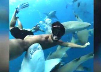 Buzo influencer graba increíble video nadando junto a decenas de tiburones