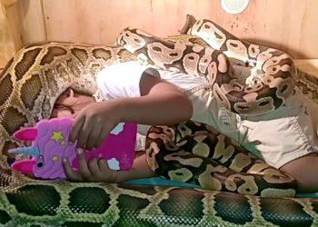 Niña juega con su celular mientras es cubierta por enormes serpientes en su cuerpo