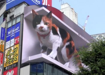 Un gato gigante en 3D en Tokio