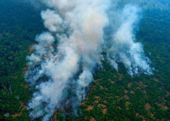 La selva del Amazonas está a punto de convertirse en una fuente de CO2 por la deforestación