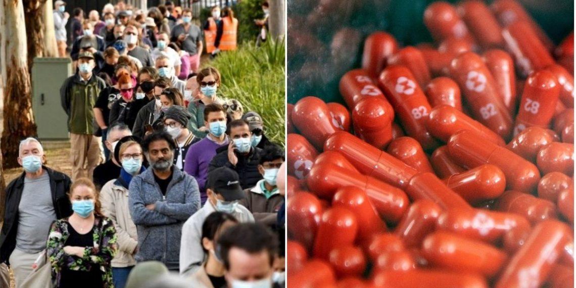 El molnupiravir se ha convertido en una prometedora píldora antiviral para combatir el COVID-19. Foto: AFP/ AP