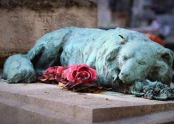El perrito Bobby no ha abandonado el lugar desde que sepultaron a su amo. Foto: Pixabay